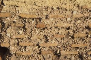 Surface crust loss Pérdida de costra superficial